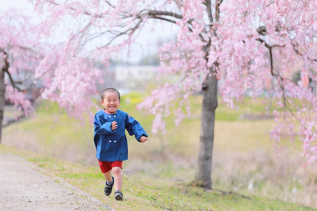 可児川で桜と入園フォト 【可児市】