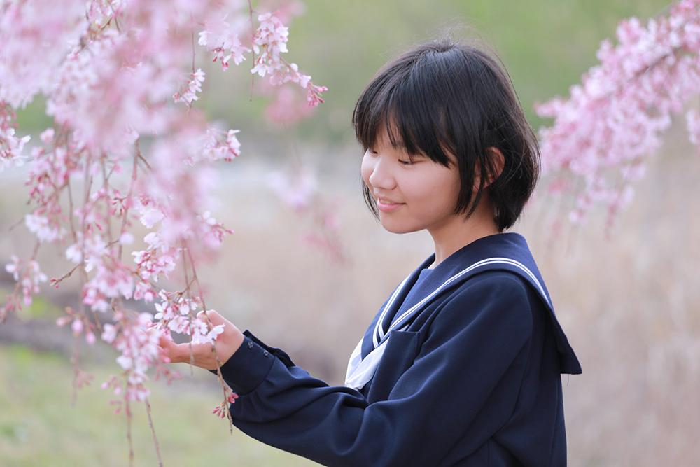 桜とセーラー服で中学校入学フォト 【可児川】