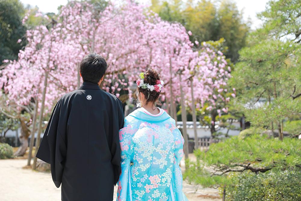 多治見の虎渓山永保寺にて和装前撮り 桜とともに【可児】4/7